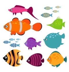 Cute fish set Smiling swimming aquarium vector image