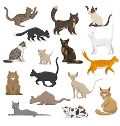 Domestic Cat Breeds Flat Icons Collection vector image