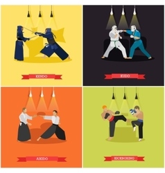 set of martial arts flat design vector image