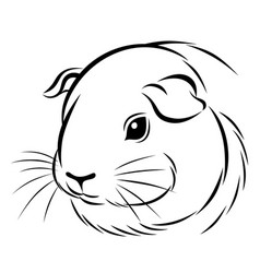 stylized guinea pig head vector image
