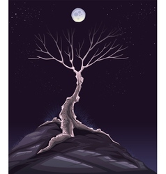 Landscape with tree in the night vector image vector image
