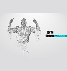 abstract silhouette a bodybuilder gym vector image