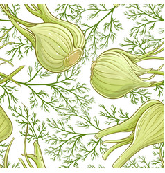 fennel pattern vector image