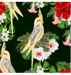 Seamless texture yellow cockatiel tropical bird vector
