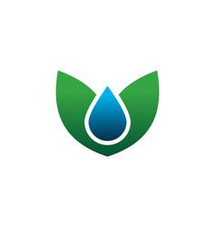 leaf drop logo vector image
