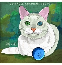 Khao manee cat vector