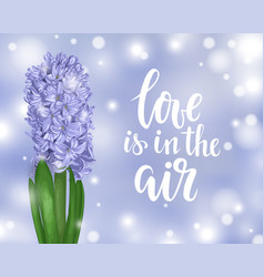 Beautiful purple hyacinth spring is in the air vector