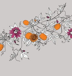 passion fruit and floral background vector image
