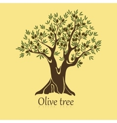 Ripe berries on branches of olive tree banner vector image