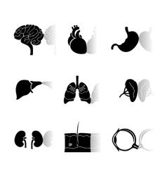 human body icons vector image
