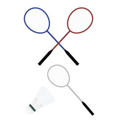 badminton and shuttle vector image