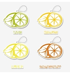 Citrussti sticker Icons vector image