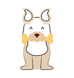 cute dog mascot with bone vector image