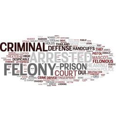 felony word cloud concept vector image