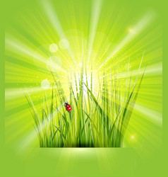 spring background with green grass sunshine and a vector image