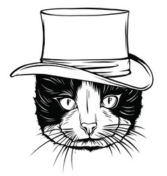 animal portrait cat in tall hat vector image