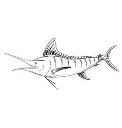 Atlantic vector image
