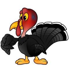 Black Turkey vector image