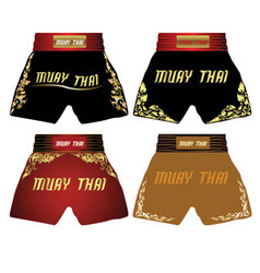 Muay-thai vector