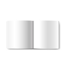 opened book isolated vector image