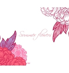 Peony bouquet background birthday card or vector