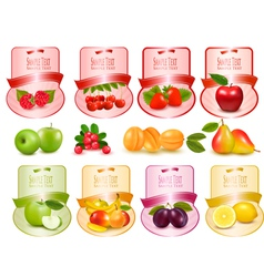 labels with berries and fruit vector image vector image