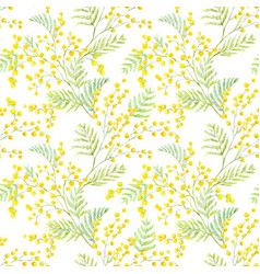 watercolor mimosa pattern vector image