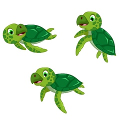 funny three turtle cartoon vector image vector image