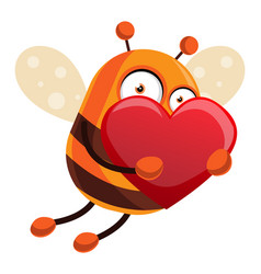 Bee is holding a big red heart on white vector