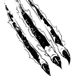 Claws Ripping Paper Grunge Version vector image