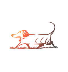 dog walking outdoor pet domestic concept hand vector image