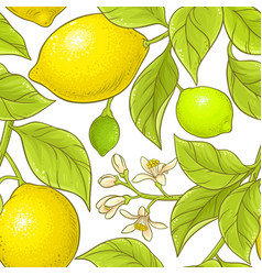lemon branch pattern vector image