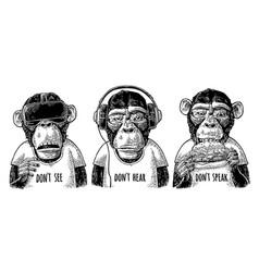 Three wise monkeys not see not hear not speak vector