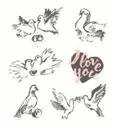 Drawn wedding pigeon love symbol sketch vector image vector image