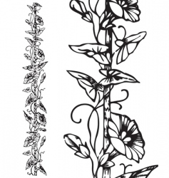 antique floral border engraving vector image