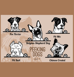 Peeking dogs - set heads and paws - dog vector