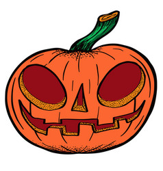 pumpkin drawn for halloween vector image