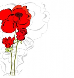 rose flowers vector image