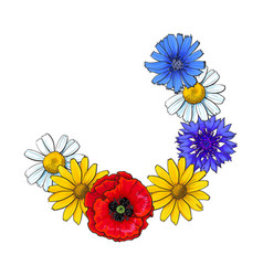 segment of wild flower wreath decoration element vector image
