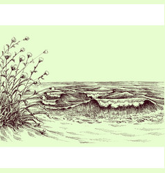 beach and sea carbon drawing vector image vector image
