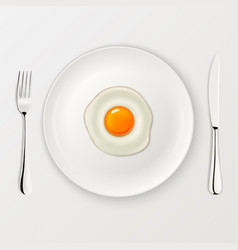 realistic fried egg icon on a plate with vector image vector image