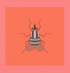 Flat shading style insect fly vector