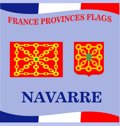 Flag of french province navarre vector