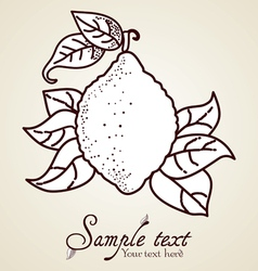 Hand-drawn fruit icon vector image