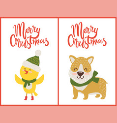 merry christmas bird and dog vector image