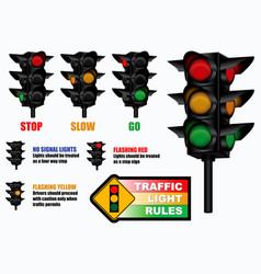 set traffic light rules sign vector image