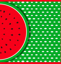 summer background with watermelon fruit vector image