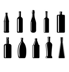 collection of bottles of different shapes vector image vector image