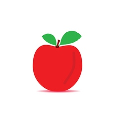 apple red vector image