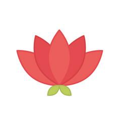 Lotus flower oriental element decoration color vector